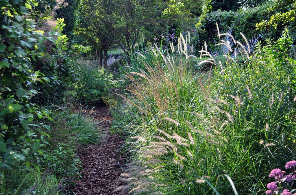 25-26 mei Schaduwplantenweekend Kwekerij aan de Dijk